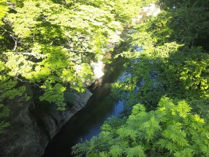 【宮城県】秋保温泉・松島旅行記